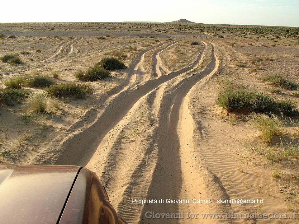 Mauritania Album 044 Parc National Du Banc D Arguin