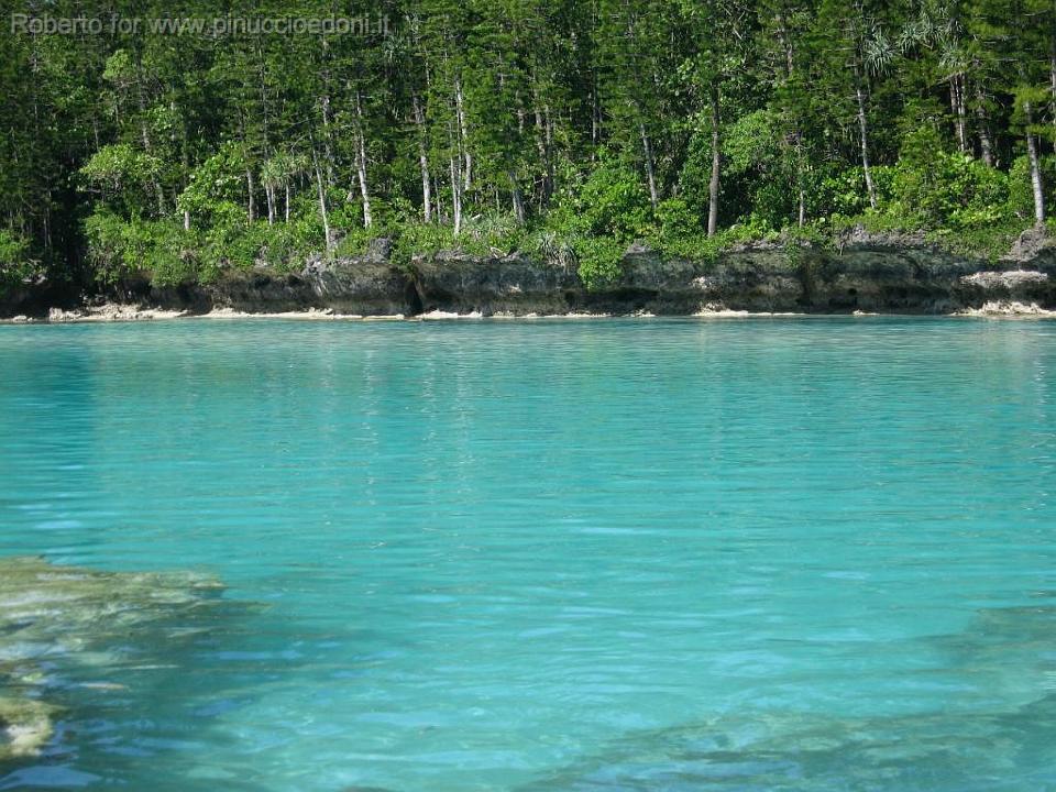 Nuova caledonia isola dei pini 15 la piscina naturale for Piscina naturale