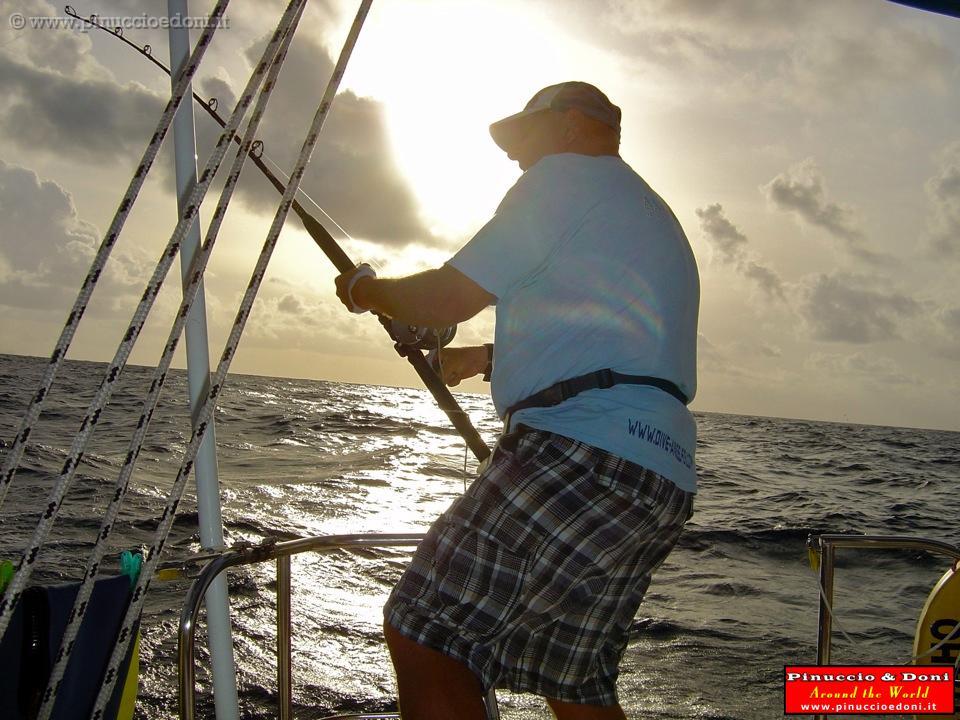 Pesca Alla Traina Seychelles 086 Pesca Alla
