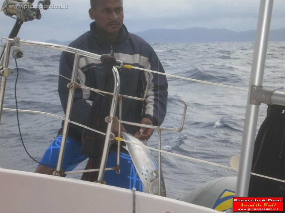 Pesca Alla Traina Seychelles 549 Pesca Alla Traina Jpg